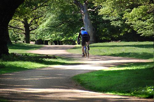 richmond park cycling